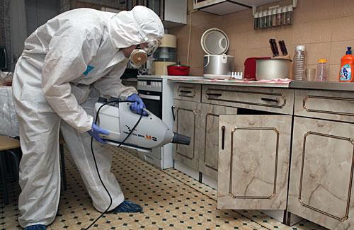 Уничтожаем тараканов в мебели