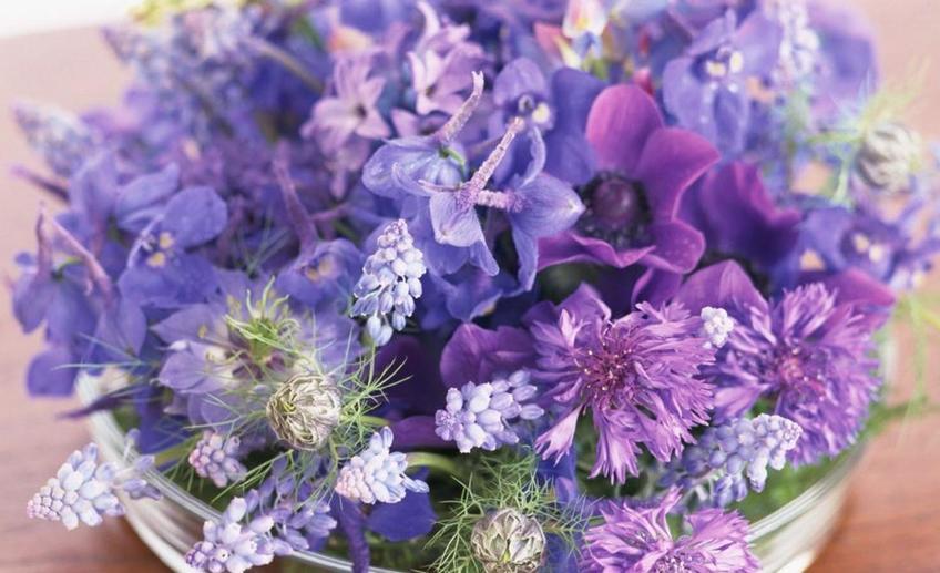 букет цветы купить