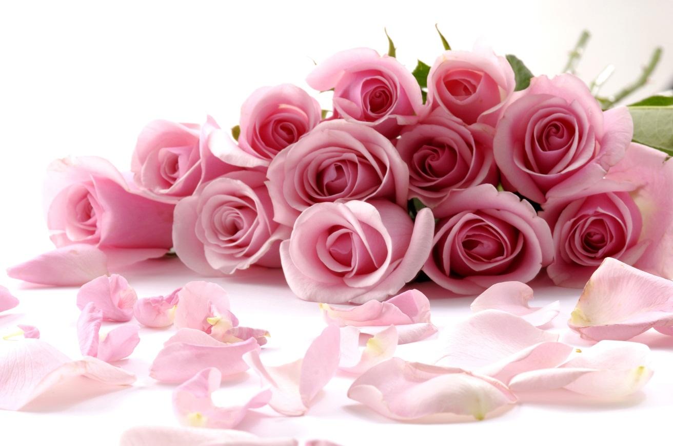 букет роз доставка