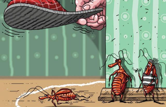 Уничтожаем тараканов до переезда