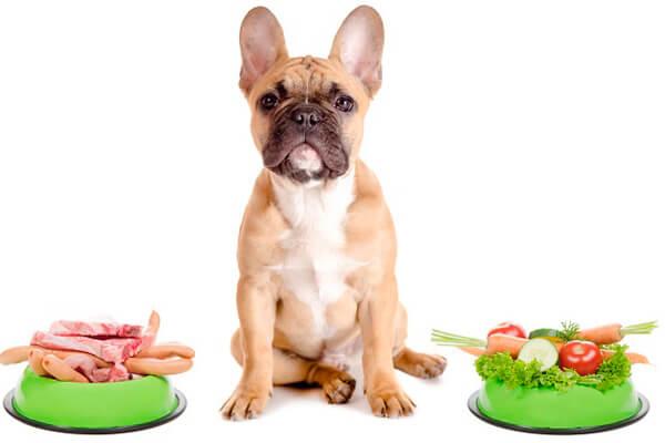 купить корм для собак Йозера