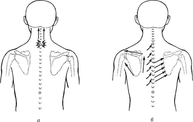 массаж шейно-воротниковой зоны киев