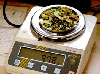 Весы для сухого корма